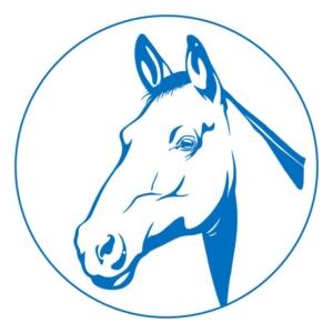 Для лошадей